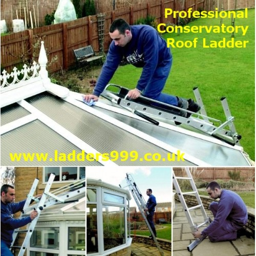 Professional CONSERVATORY Roof Ladder