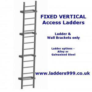 FIXED Vertical Access Ladders - Ladder Only
