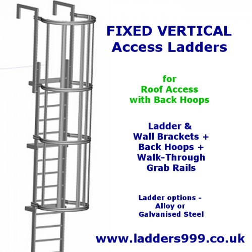 FIXED Vertical Ladders - Ladder with Hoops for ROOF TOP ACCESS
