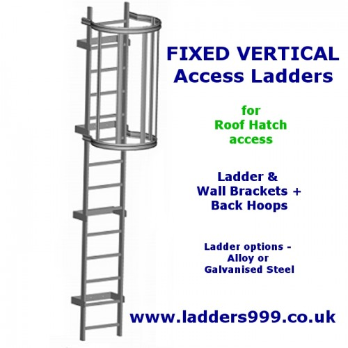 FIXED Vertical Ladders - Ladder with Hoops for ROOF HATCH ACCESS