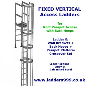 FIXED Vertical Ladders - Ladder with Hoops for ROOF PARAPET ACCESS