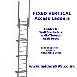 FIXED Vertical Access Ladders - Ladder & Walkthrough Posts