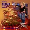 Hailo MINI 2tread Step